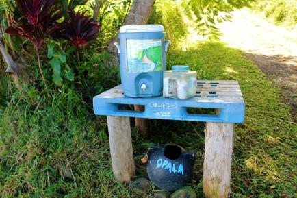 La dernière maison vers Pololu Lookout offre de l'eau fraîche aux passants!